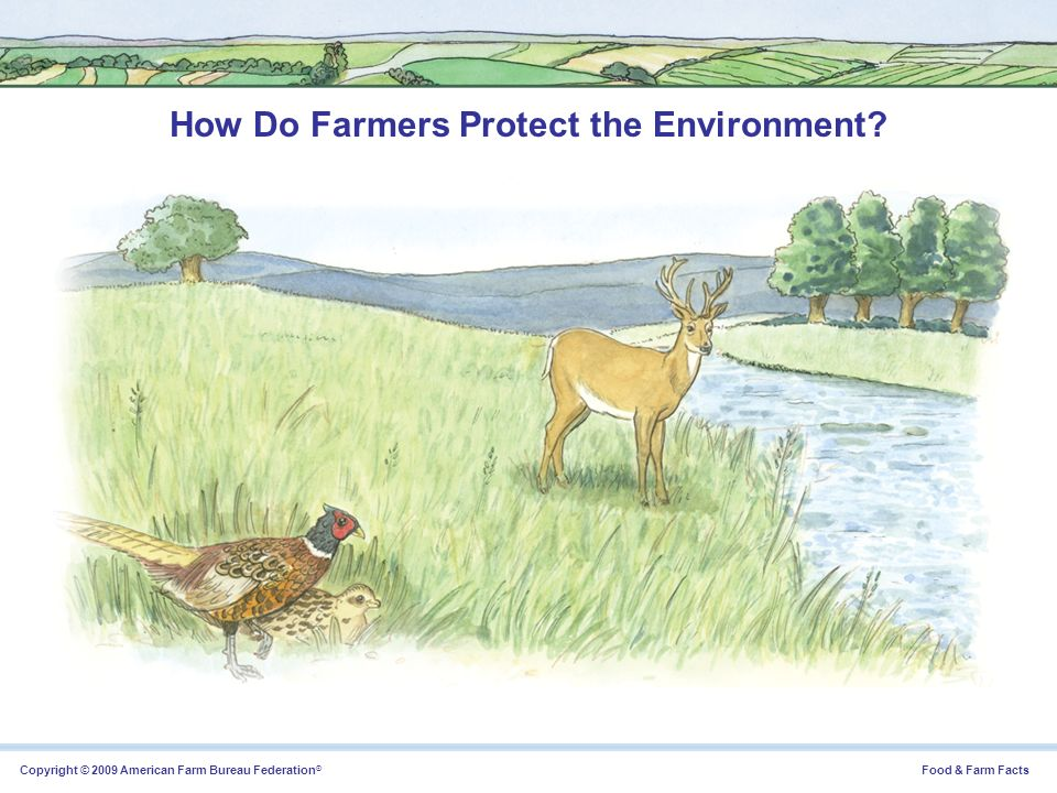 How Do Farmers Protect the Environment