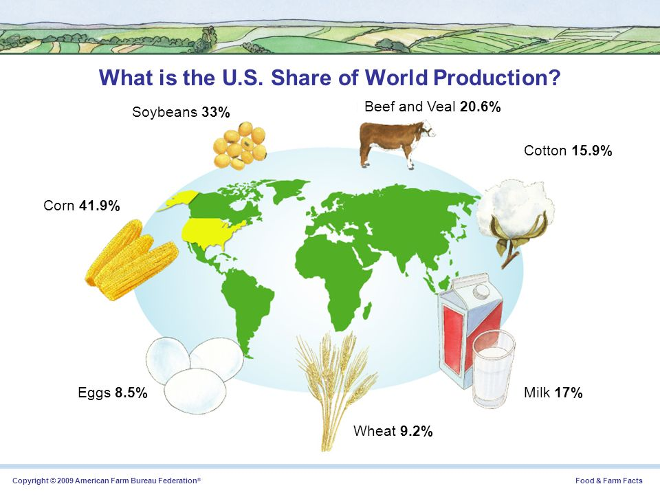 What is the U.S. Share of World Production