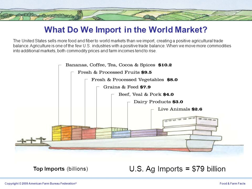 What Do We Import in the World Market