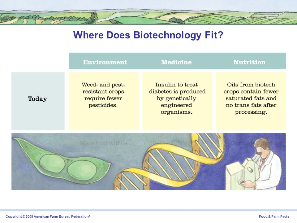 Where Does Biotechnology Fit