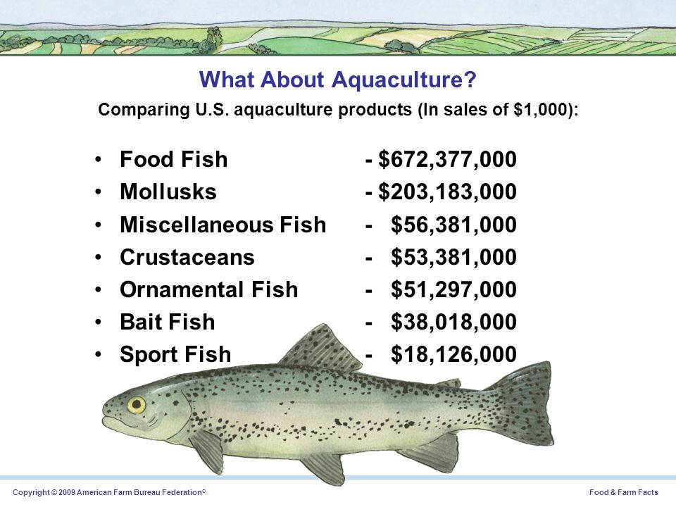 What About Aquaculture