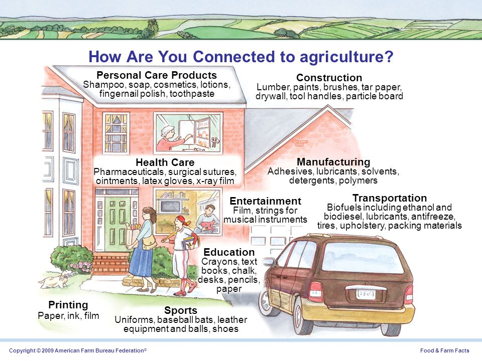 How Are You Connected to agriculture