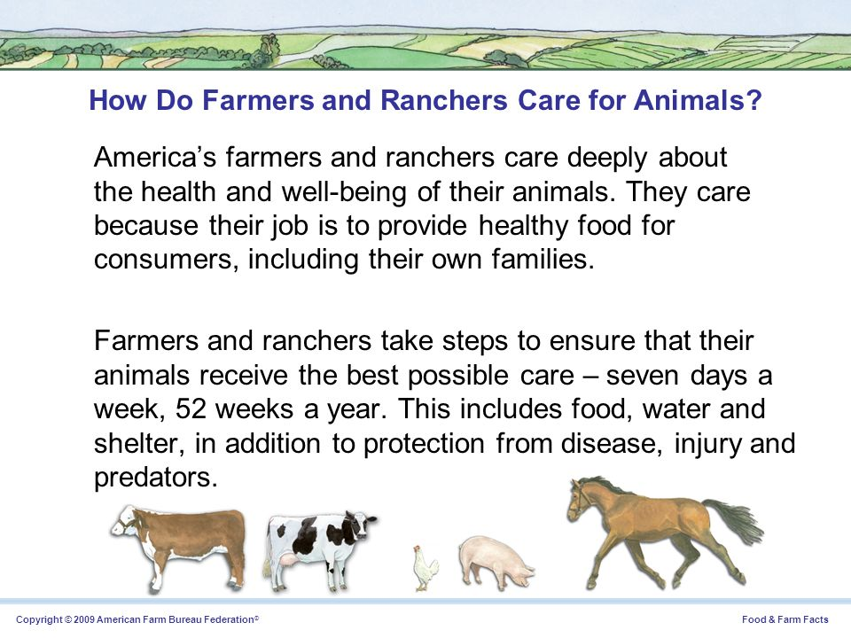 How Do Farmers and Ranchers Care for Animals