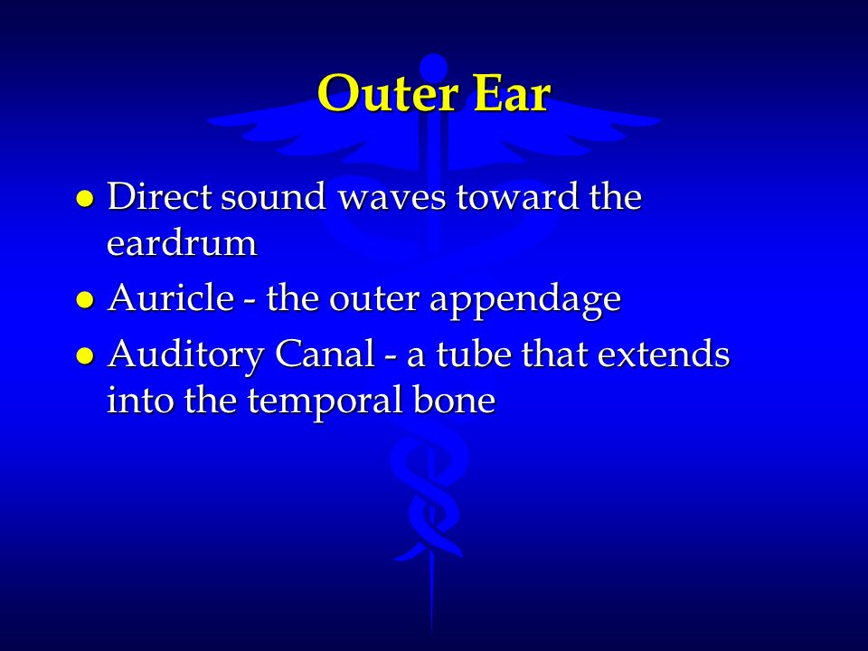 Outer Ear Direct sound waves toward the eardrum