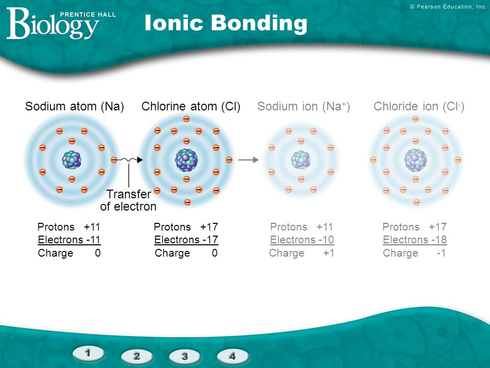 Ionic Bonding Sodium atom (Na) Chlorine atom (Cl) Sodium ion (Na+)
