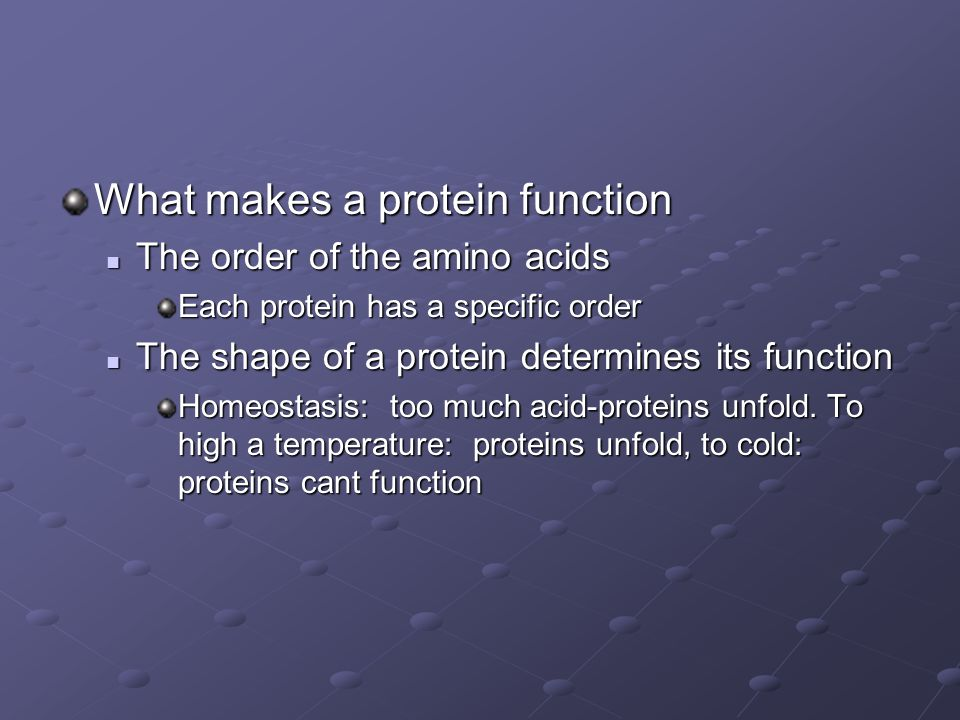 What makes a protein function