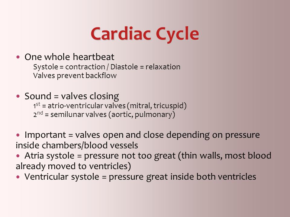 Cardiac Cycle One whole heartbeat Sound = valves closing