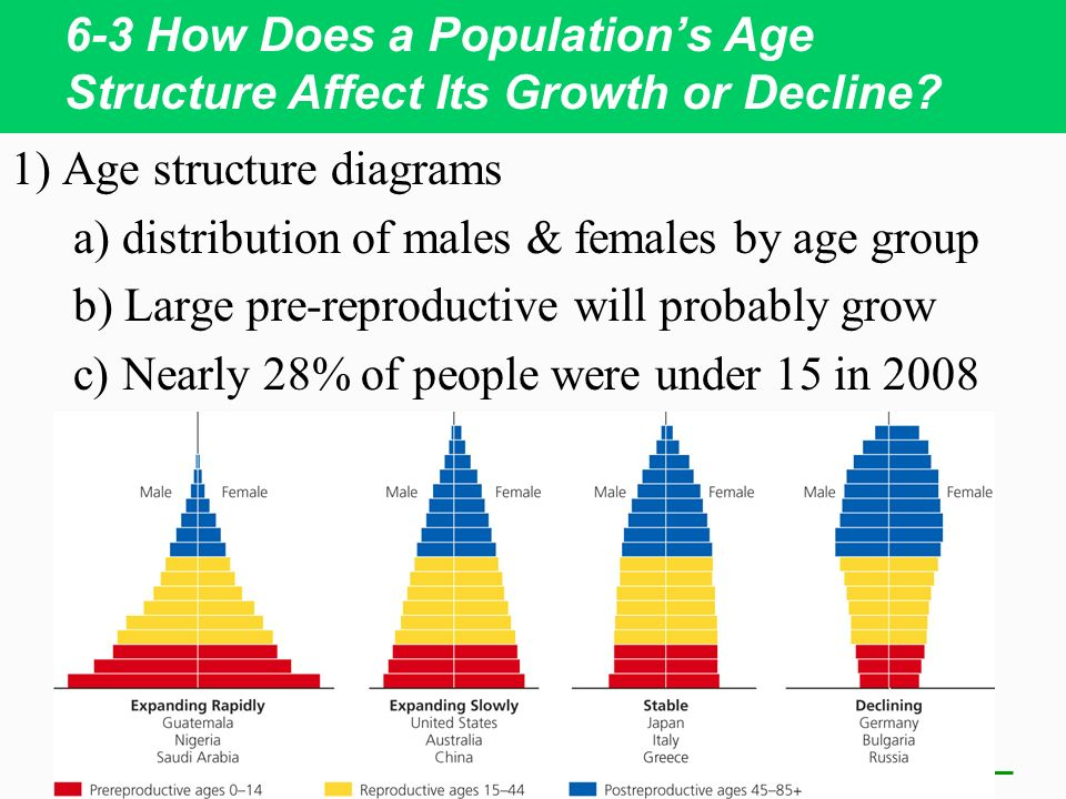 The Effects of Population Growth on Economic Development