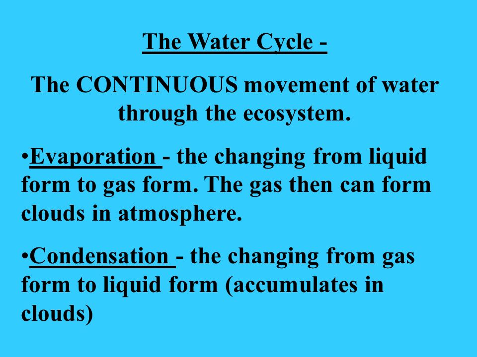 The CONTINUOUS movement of water through the ecosystem.
