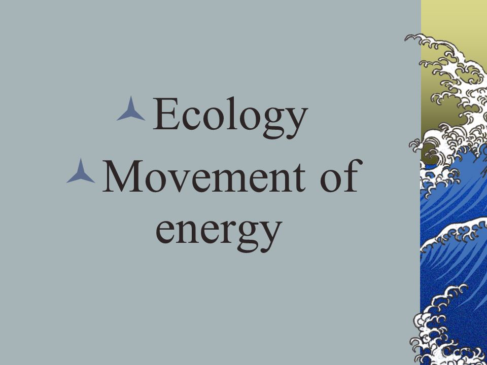 Ecology Movement of energy