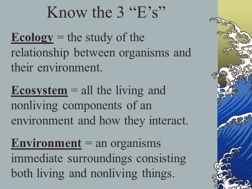 Know the 3 E's Ecology = the study of the relationship between organisms and their environment.