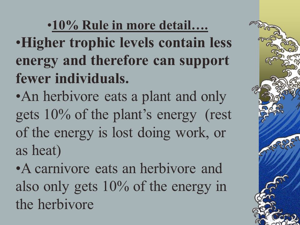 10% Rule in more detail…. Higher trophic levels contain less energy and therefore can support fewer individuals.