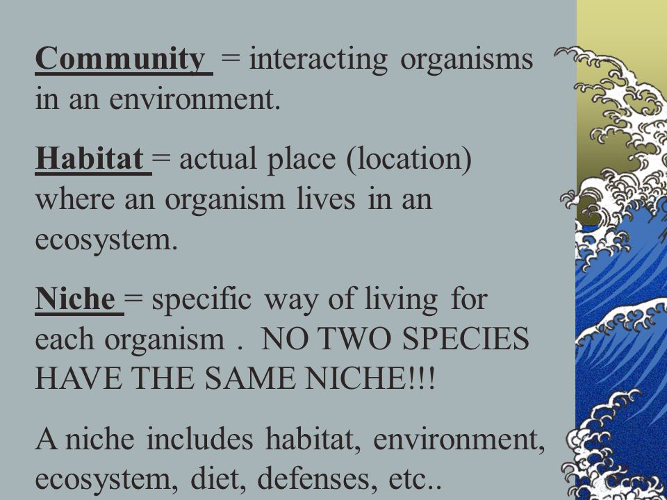 Community = interacting organisms in an environment.