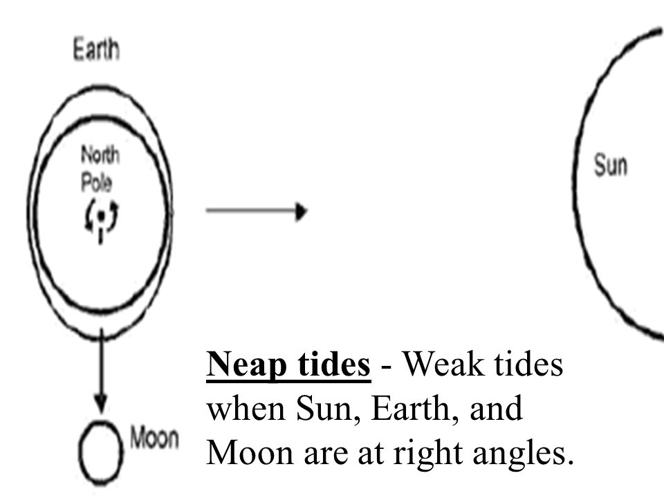 Neap tides - Weak tides when Sun, Earth, and Moon are at right angles.
