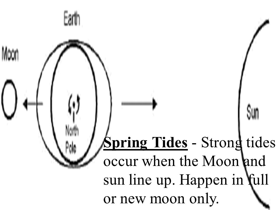 Spring Tides - Strong tides occur when the Moon and sun line up