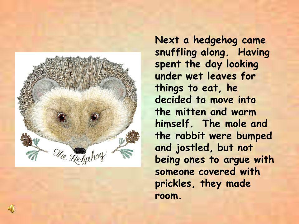 Next a hedgehog came snuffling along