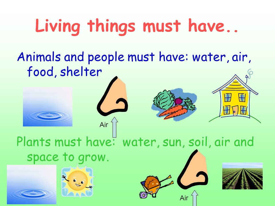 Living things must have..
