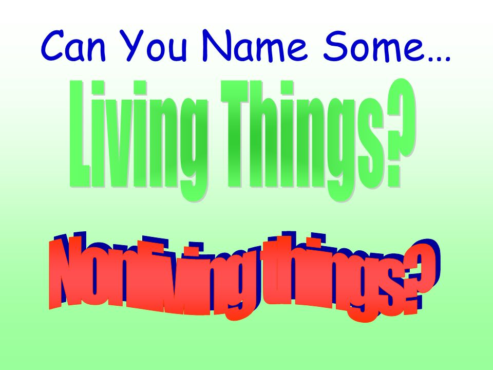 Can You Name Some… Living Things Nonliving things