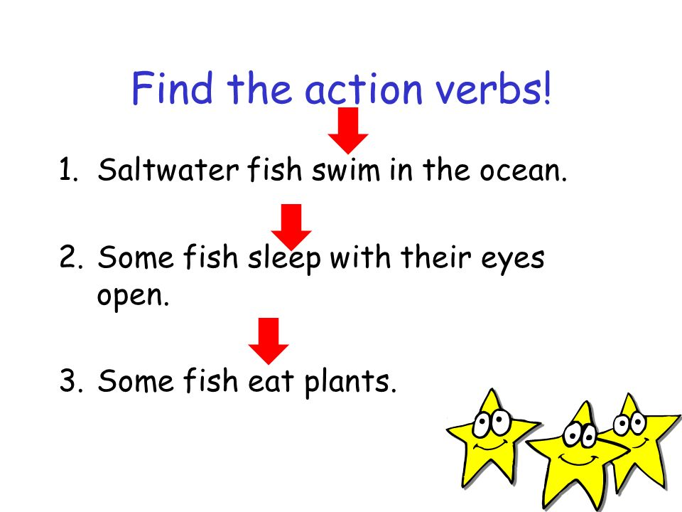 Find the action verbs! Saltwater fish swim in the ocean.