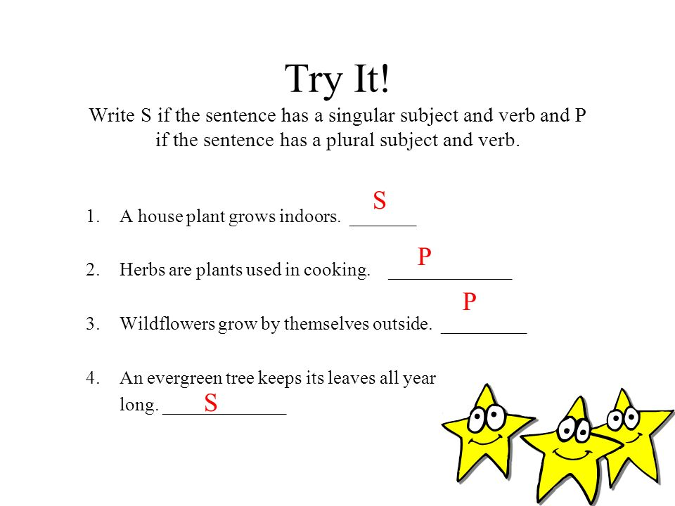 Try It! Write S if the sentence has a singular subject and verb and P if the sentence has a plural subject and verb.