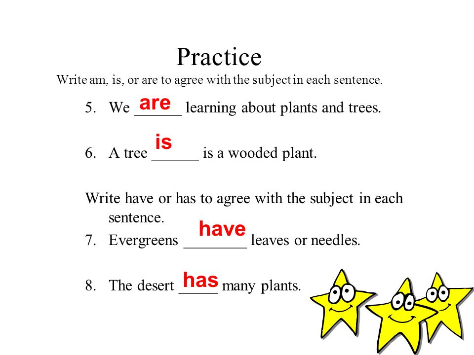 Practice Write am, is, or are to agree with the subject in each sentence.