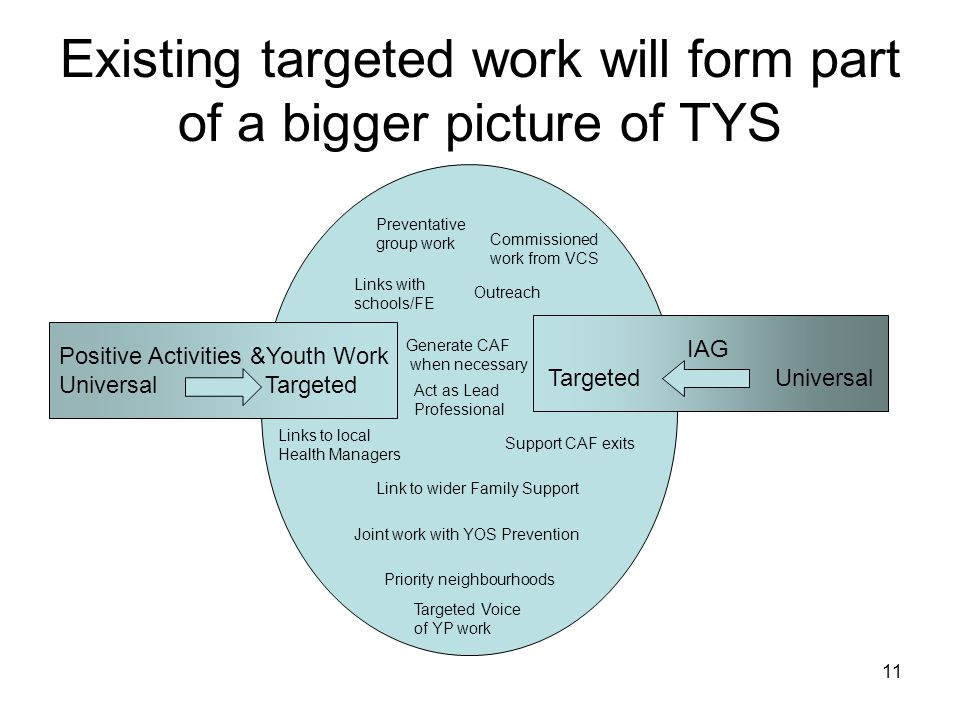 Existing targeted work will form part of a bigger picture of TYS