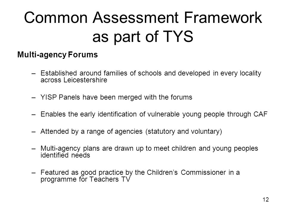 Common Assessment Framework as part of TYS