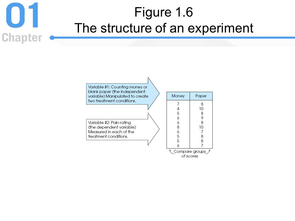 Figure 1.6 The structure of an experiment