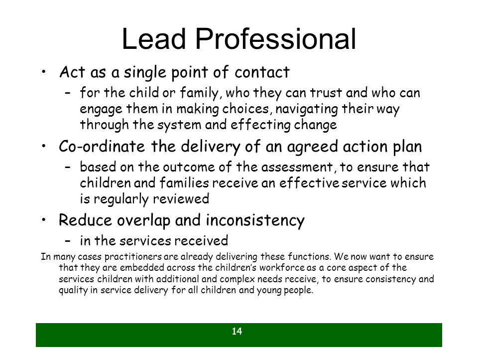 Lead Professional Act as a single point of contact