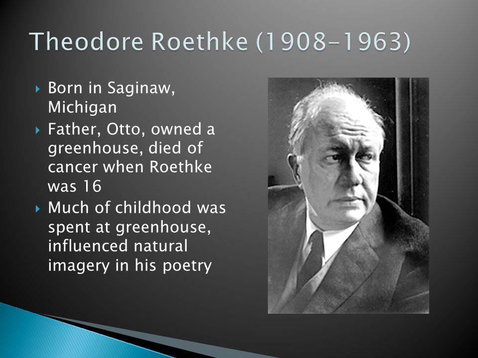 theodore roethke Many of theodore roethke's finest poems evoke the plant and insect life he knew intimately growing up in michigan around the greenhouses of his family's floral business troubled throughout adulthood by mental instability and alcoholism, he often dwells on his psyche's vulnerability, but also shows a deft comic touch in.