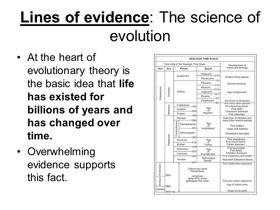 Five Proofs of Evolution