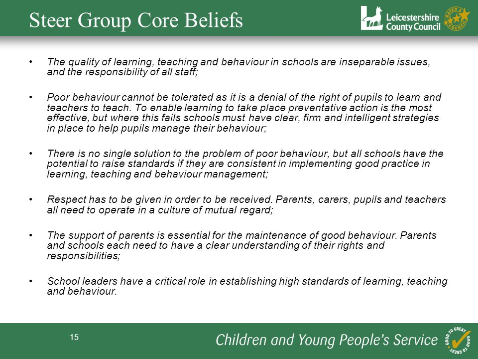 Steer Group Core Beliefs