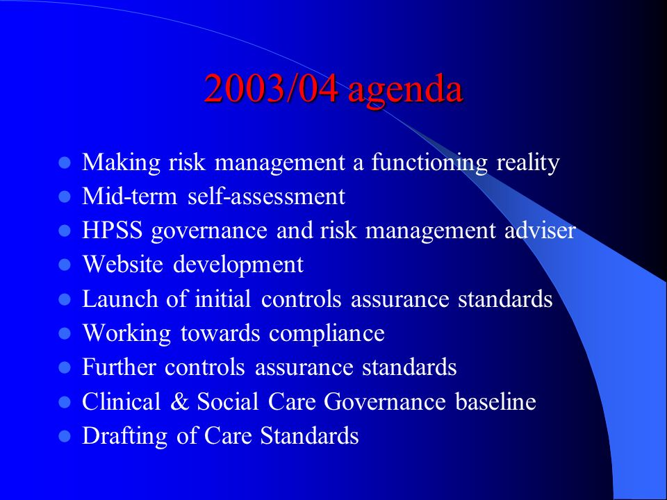 2003/04 agenda Making risk management a functioning reality