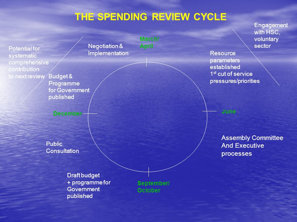 THE SPENDING REVIEW CYCLE