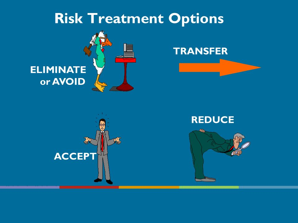Risk Treatment Options