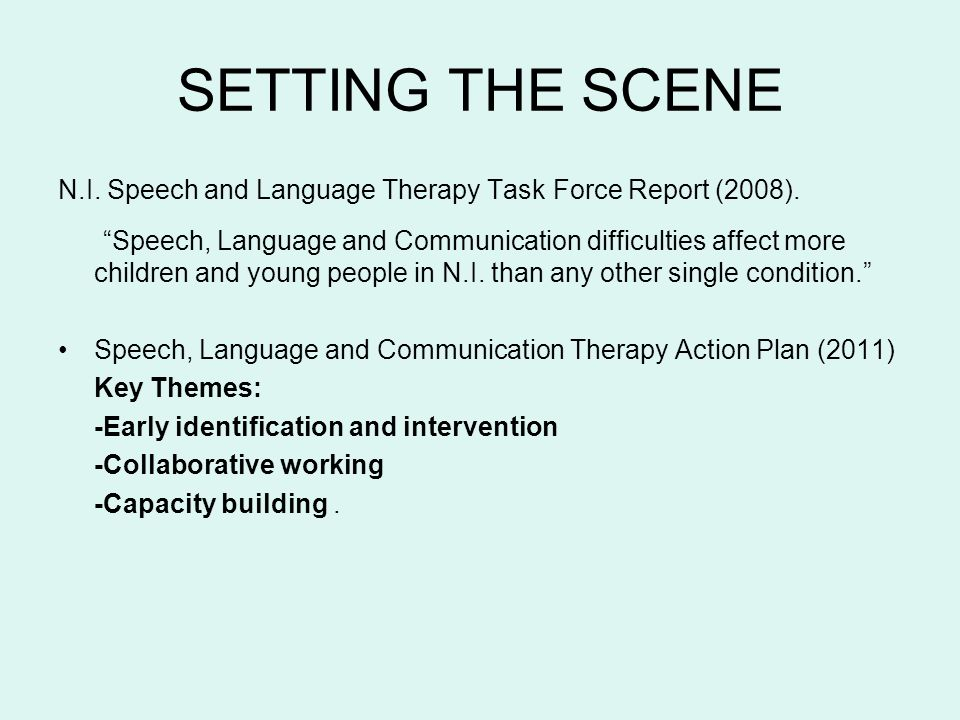 SETTING THE SCENE N.I. Speech and Language Therapy Task Force Report (2008).