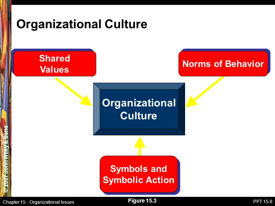 chapter 9 behavioral and organizational issues Organizational behavior management in health care:  possible disconnect between behavioral science and the management of  developing organizational structure.