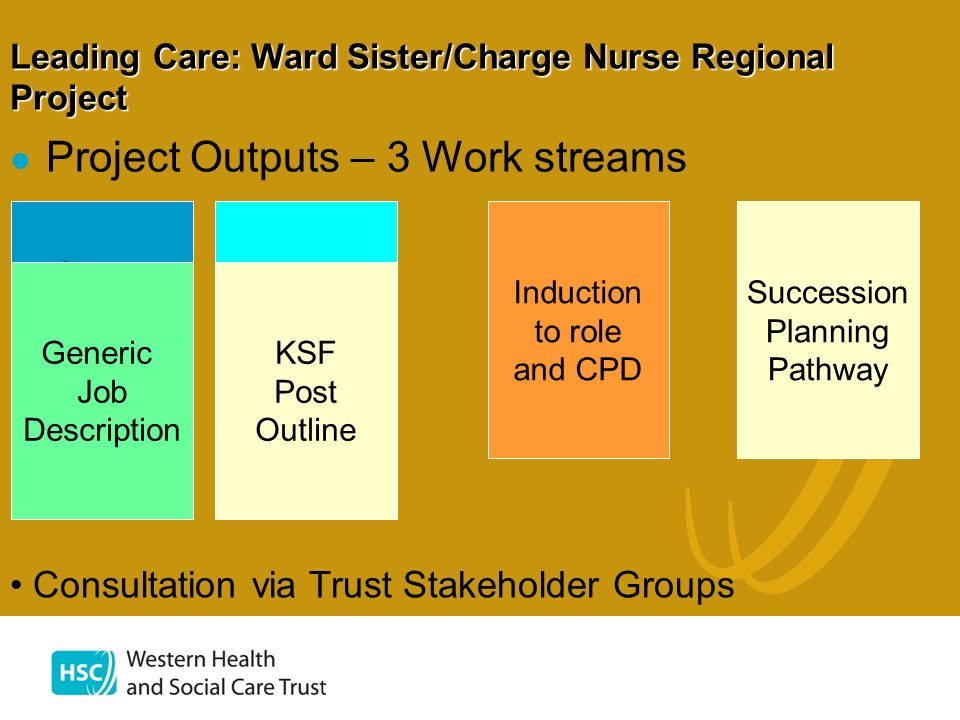 Leading Care: Ward Sister/Charge Nurse Regional Project