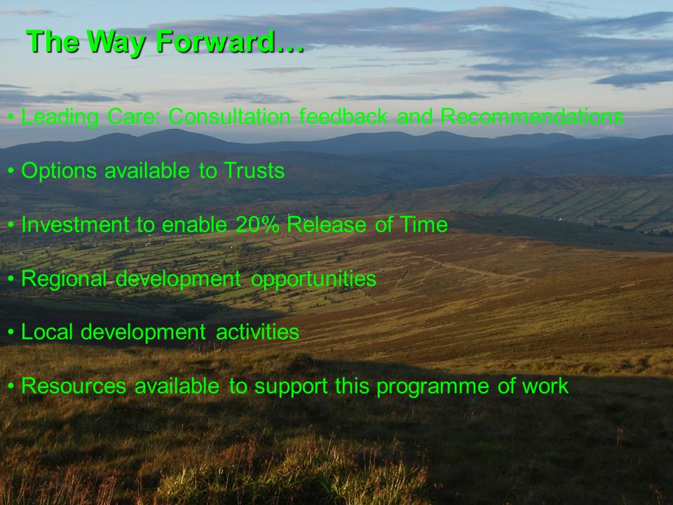 The Way Forward… Leading Care: Consultation feedback and Recommendations. Options available to Trusts.