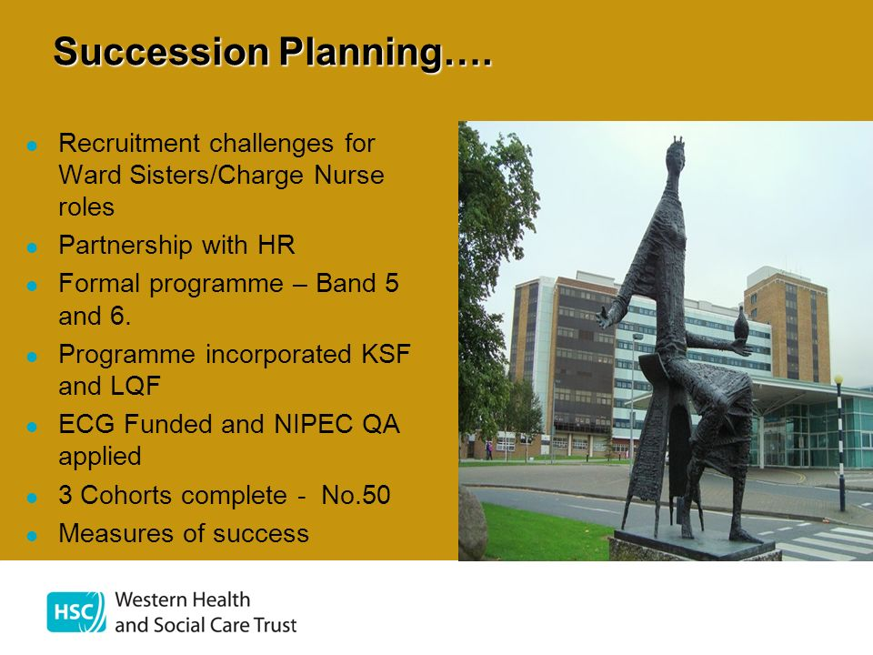 Succession Planning…. Recruitment challenges for Ward Sisters/Charge Nurse roles. Partnership with HR.