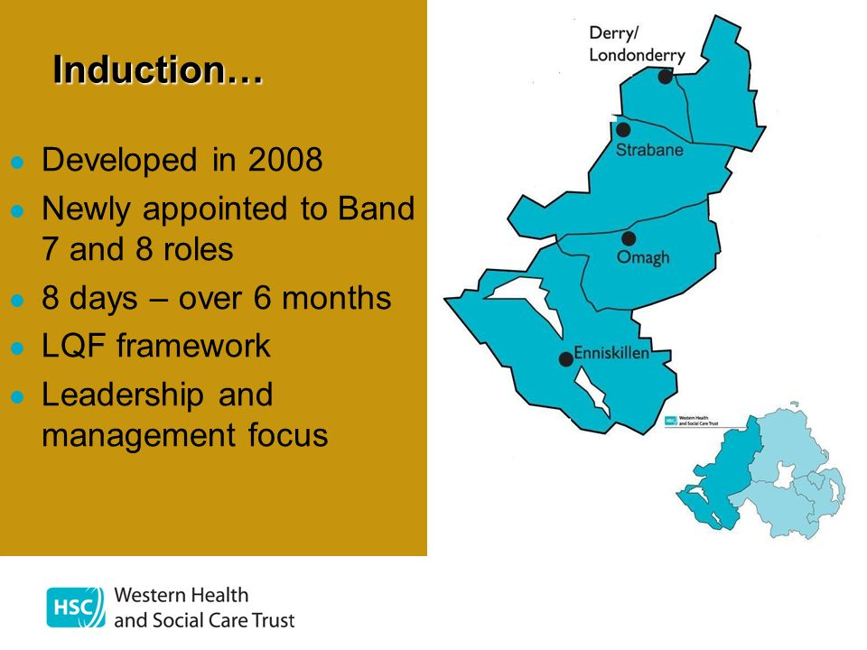 Induction… Developed in 2008 Newly appointed to Band 7 and 8 roles