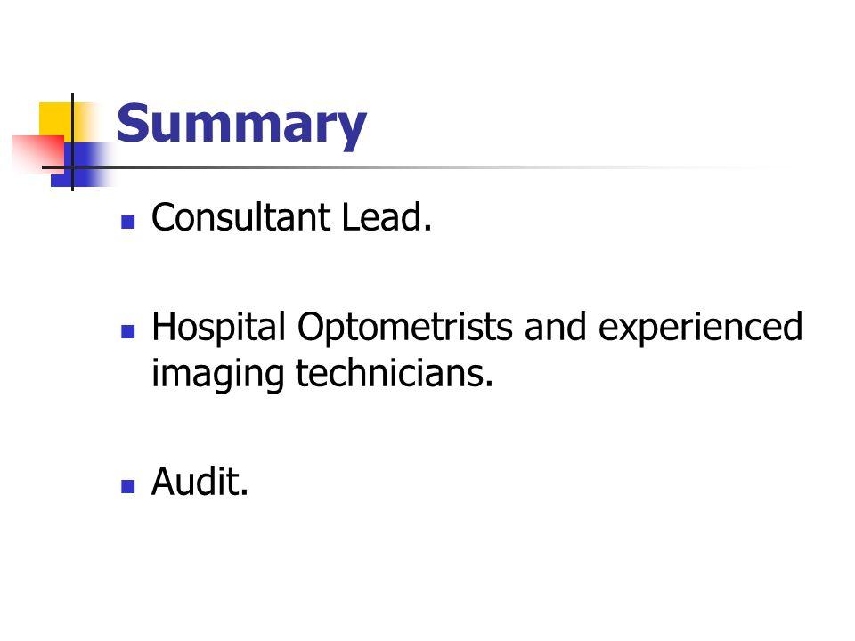 Summary Consultant Lead.