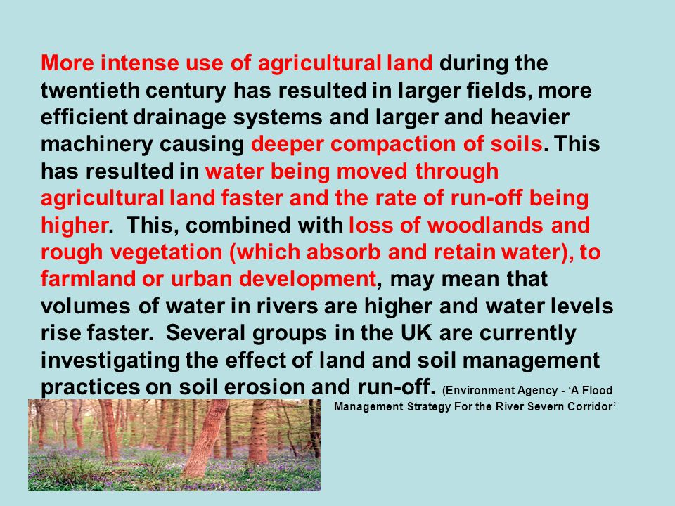 More intense use of agricultural land during the