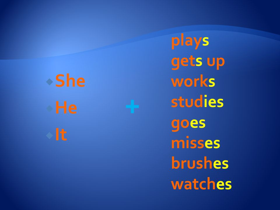 plays gets up works studies goes misses brushes watches She He It +