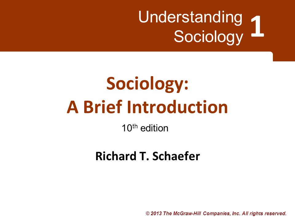 Sociology: A Brief Introduction 11th Edition Loose Leaf by Richard T. Schaefer
