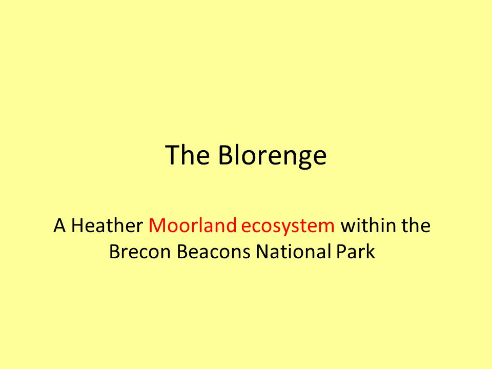 A Heather Moorland ecosystem within the Brecon Beacons National Park