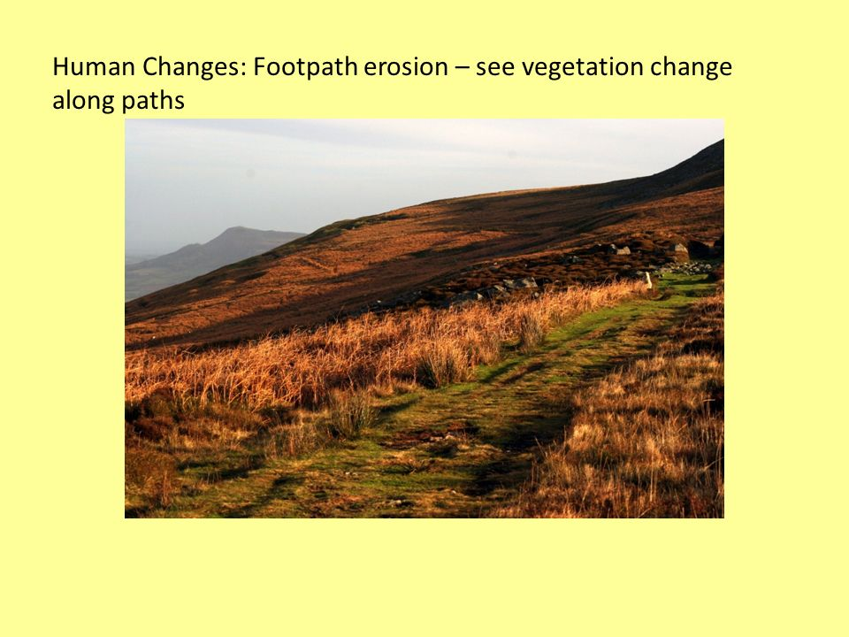 Human Changes: Footpath erosion – see vegetation change along paths