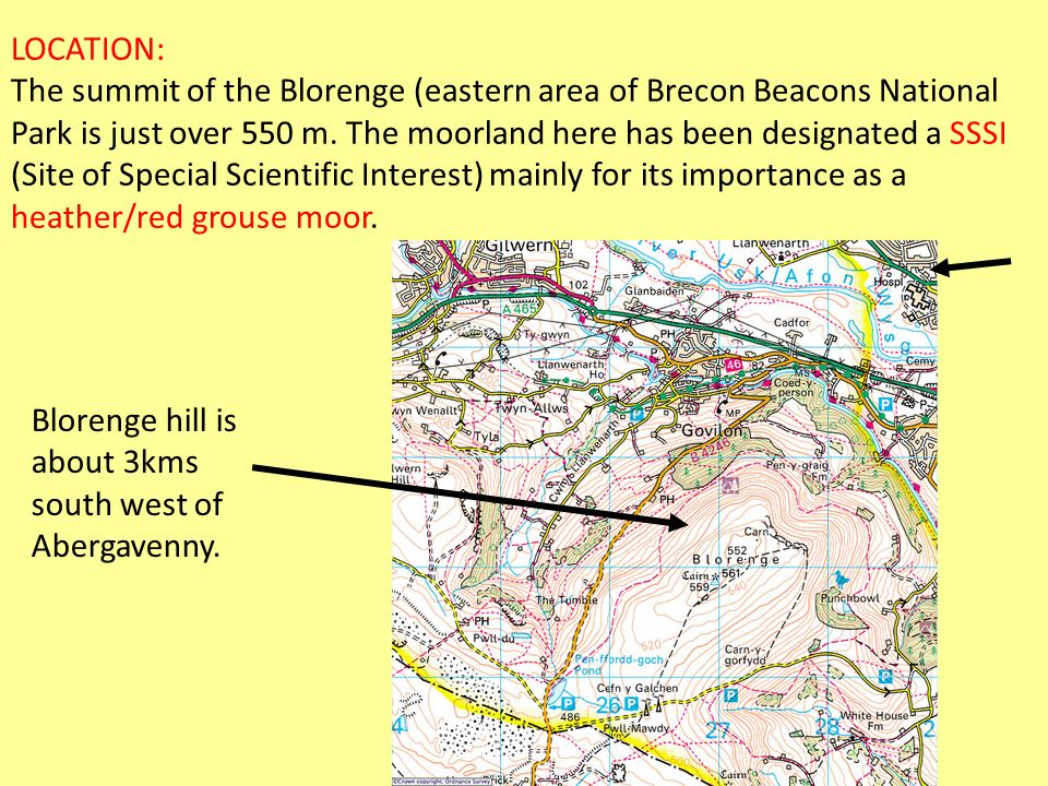 LOCATION: The summit of the Blorenge (eastern area of Brecon Beacons National Park is just over 550 m. The moorland here has been designated a SSSI (Site of Special Scientific Interest) mainly for its importance as a heather/red grouse moor.