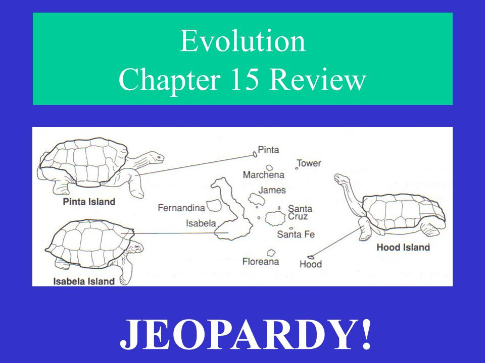 Evolution Chapter 15 Review - ppt video online download