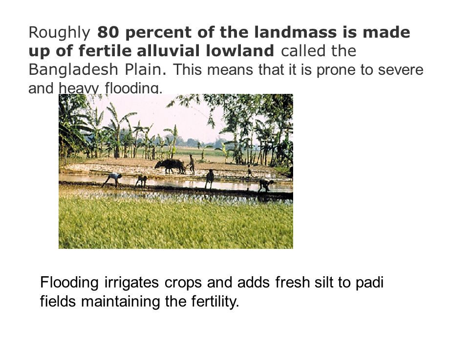 Roughly 80 percent of the landmass is made up of fertile alluvial lowland called the Bangladesh Plain. This means that it is prone to severe and heavy flooding.